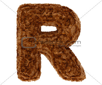 3d bushy bear fur alphabet capital letter R