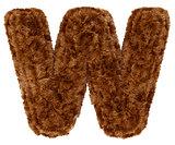 3d bushy bear fur alphabet capital letter W