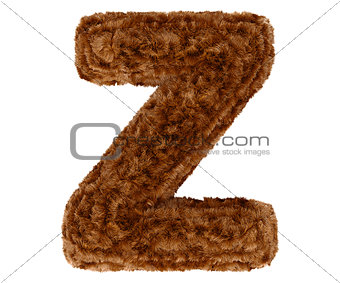 3d bushy bear fur alphabet capital letter Z