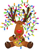 Cute reindeer with Christmas lights