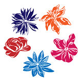 Five multi-colored vector flowers