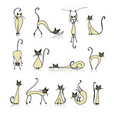 Siamese cat collection, sketch for your design