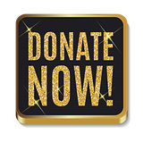 Gold Glitter Shiny Donate Now Icon. Button with Shadow for Your