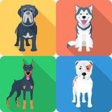 Set 9 dog icon flat design