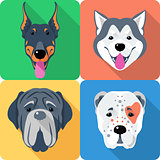 set 9 dog head icon flat design
