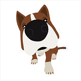 Dog with large head and nose. Vector Illustration
