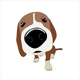 Jack Russell Terrier with large head and nose. Vector Illustration of a dog