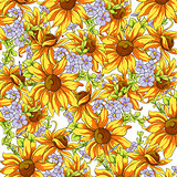 Bright background of sunflowers