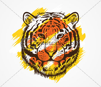 Tiger Head Colorful