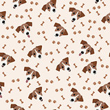 Jack Russell Terrier Vector Seamless pattern. Dog, bone, paw print.
