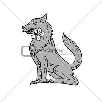 Timber Wolf Sitting Plumeria Flower Drawing