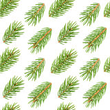 Seamless pattern of fir tree branches