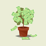 Money tree icon flat Isolated on background.