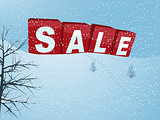 Winter sale in 3D letters over snow hill background