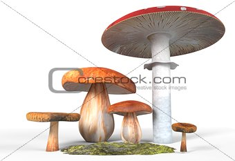 ceps, paxil, amanita muscaria mushrooms with moss isolated on white 3d illustration