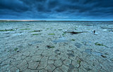 cracked Wadden sea coast in summer at low tide