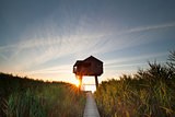 sunbeams behind wooden observation tower
