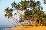 Sri Lanka: the beach in south coast of Indian ocean