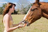 Teen Girl Feeds Horse
