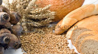 Cereals isolated