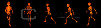 3d render walking fire skeleton by X-rays in red