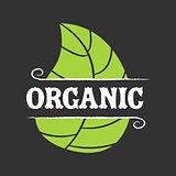 Organic food icon