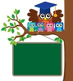 Owl teacher and owlets theme image 3