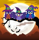 Owl witches theme image 3