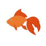 Goldfish. Vector aquarium fish illustration.