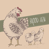 Vintage design with chickens. Happy Mothers day.