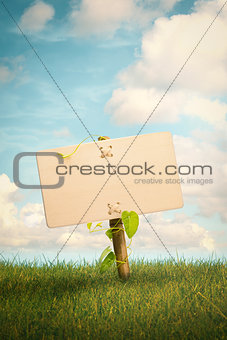 Blank Wooden Sign and Natural Background