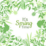 Its spring time green card design text in floral frame