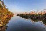 sunrise in Danube Delta