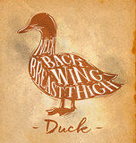 Duck cutting scheme craft