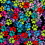 Paw Print-background