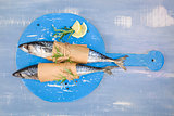Mackarel fish background.