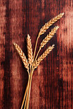 Dried barley.