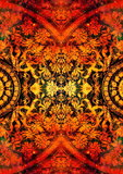 filigrane floral ornament with mandala shape on cosmic backgrond, computer collage. Fire effect.