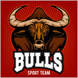 Bulls Mascot Illustration