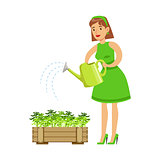 Woman Watering Sprouts In Crate , Contributing Into Environment Preservation By Using Eco-Friendly Ways Illustration