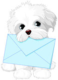 Cute Dog Delivering Mail Envelope