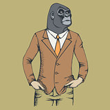 Monkey gorilla vector illustration