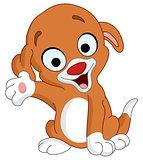 Presenter puppy