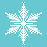 White snowflake.