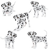 Dalmatians, cute, sad. Vector Illustration. Portrait of Dalmatian Puppy. Dog isolated.