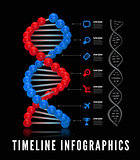 Dna infographics. Vector illustration