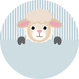Cute sheep round sticker