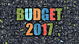 Budget 2017 Concept with Doodle Design Icons.