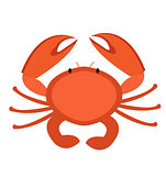 Crab icon flat style. Isolated on white background. Vector illustration, clip art.