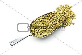green coffee beans in metal scoop